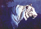 White Tiger in the Night - Latch-hook Rug