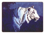White Tiger in the Night - Latch-hook Rug Pattern